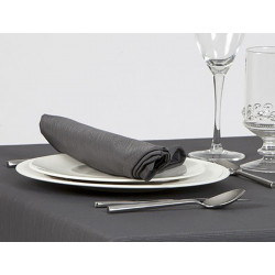 Lot de 10 serviettes de table 100% polyester faux uni - BOREAL - 245 gr/m²